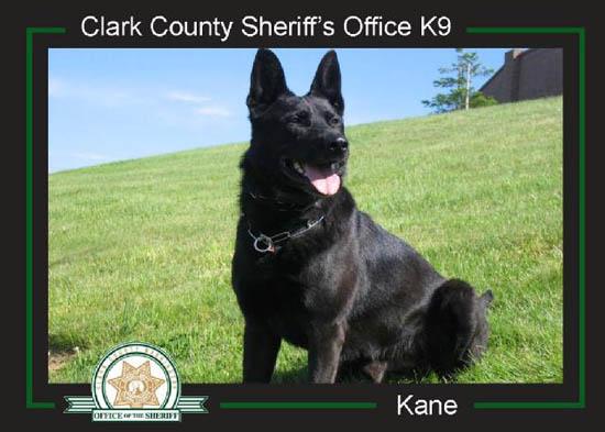 K9 Kane