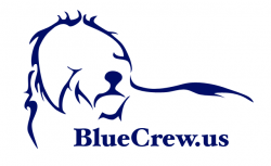 Blue Crew - Police Training
