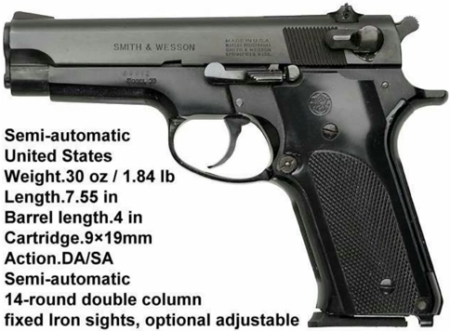 Smith Wesson Model 59 photo from YouTube).