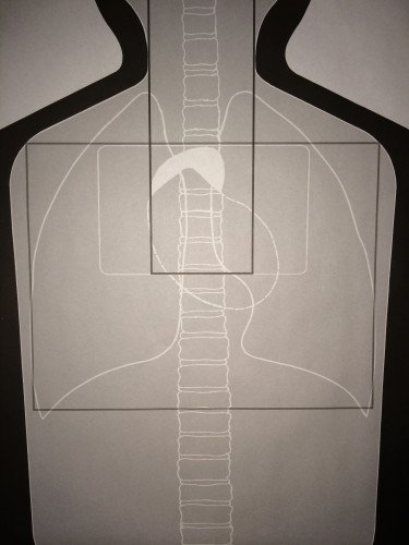 The white rectangular box in the upper chest is the targeting area, with the black box within it as the ideal shot placement for the heart.