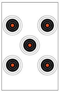 A standard law enforcement 5 bulls eye training target.