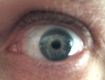 The Pupil is the black circle in the middle of the eye. The Iris is the colored portion.