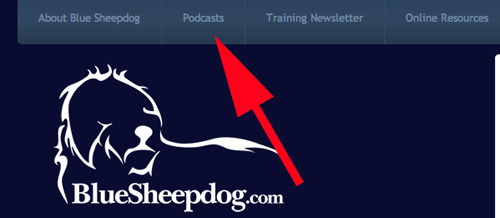 police training podcast
